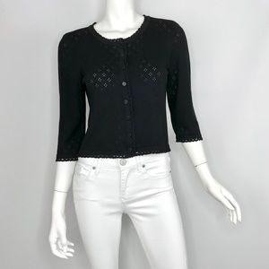 {Cynthia Steffe} Knit Cropped Button Sweater Top